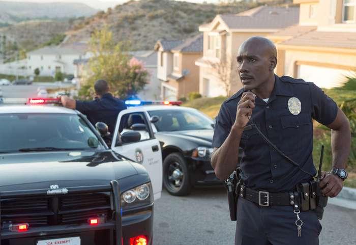Полицейские рассказали обабсурдных ситуациях, которые произошли вовремя ихслужбы Интересное